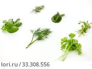 Купить «greens, spices or herbs on white background», фото № 33308556, снято 12 июля 2018 г. (c) Syda Productions / Фотобанк Лори