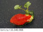 Побег клубники растёт из ягоды. Стоковое фото, фотограф Dmitry29 / Фотобанк Лори