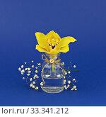 Купить «Yellow orchid flower in small glass bottle on classic blue background», фото № 33341212, снято 7 марта 2020 г. (c) Kira_Yan / Фотобанк Лори