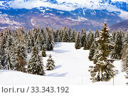 Forest snow covered after strong snowfall in Alpes (2019 год). Стоковое фото, фотограф Сергей Новиков / Фотобанк Лори