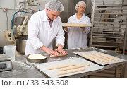 Купить «Baker forming baguettes from wholemeal dough», фото № 33343308, снято 26 мая 2020 г. (c) Яков Филимонов / Фотобанк Лори