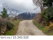 Купить «Country road in the highlands (Greece, Peloponnese) on a winter, snowy day», фото № 33343920, снято 24 декабря 2019 г. (c) Татьяна Ляпи / Фотобанк Лори