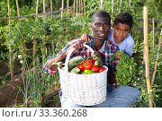 Купить «Portrait farmer and son with harvest of tomatoes, bell pepers and parsley from the garden», фото № 33360268, снято 15 июля 2020 г. (c) Яков Филимонов / Фотобанк Лори