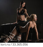 Купить «Two sexy girls wearing bdsm style clothes on sofa», фото № 33365056, снято 25 января 2018 г. (c) Гурьянов Андрей / Фотобанк Лори