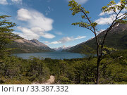 Купить «Hiking path / trail between Chile and Argentina, with Fitzroy mountains in the background. Patagonia, Argentina. January 2017.», фото № 33387332, снято 8 апреля 2020 г. (c) Nature Picture Library / Фотобанк Лори
