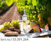 Wine, cheese, grape on vineyard background. Стоковое фото, фотограф Яков Филимонов / Фотобанк Лори