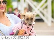 Купить «Russia, Samara, June 2019: a small shaggy dog in overalls in the arms of a beautiful mistress.», фото № 33392136, снято 18 мая 2019 г. (c) Акиньшин Владимир / Фотобанк Лори