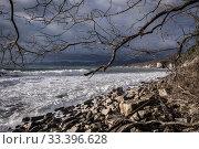 Купить «Краснодарский край, Туапсе, зимний шторм у Скалы Киселёва», фото № 33396628, снято 28 февраля 2020 г. (c) glokaya_kuzdra / Фотобанк Лори