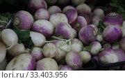 Купить «Fresh turnips on market shelves», видеоролик № 33403956, снято 20 ноября 2019 г. (c) Яков Филимонов / Фотобанк Лори