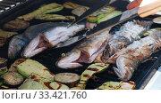 Купить «Cooking sea bass fish with vegetables on a grill barbecue», видеоролик № 33421760, снято 21 марта 2020 г. (c) Serg Zastavkin / Фотобанк Лори