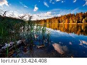 Autumnal lake near the forest. Стоковое фото, фотограф Zoonar.com/Dmitry Kushch / age Fotostock / Фотобанк Лори