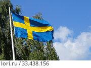 Купить «Swedish Flag Against Green Tree and Blue Sky.», фото № 33438156, снято 19 августа 2019 г. (c) age Fotostock / Фотобанк Лори