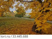 Купить «Valleinge, Botkyrka, Sodermanland, Sweden.», фото № 33445688, снято 12 октября 2019 г. (c) age Fotostock / Фотобанк Лори