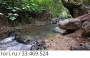 Купить «Rriver Clarios near Kakopetria. Cyprus», видеоролик № 33469524, снято 30 марта 2020 г. (c) Serg Zastavkin / Фотобанк Лори