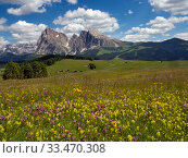 Alpine flower meadow landscape - Seiser Alm with mountains of Langkofel Group in the background. Dolomoites, South Tyrol, Italy. July 2019. Стоковое фото, фотограф Ernie  Janes / Nature Picture Library / Фотобанк Лори