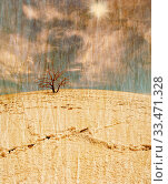 Купить «Lifeless tree in the salt desert under blue sky in grunge and retro style», фото № 33471328, снято 6 июля 2020 г. (c) age Fotostock / Фотобанк Лори