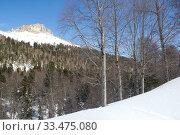 Купить «Beautiful mountains covered with snow. Sunny day and blue sky on a frosty day», фото № 33475080, снято 5 марта 2019 г. (c) Олег Хархан / Фотобанк Лори