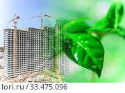 Купить «Зеленые листья на фоне строительства  жилого дома . Концепция охраны окружающей среды .», фото № 33475096, снято 2 апреля 2020 г. (c) Сергеев Валерий / Фотобанк Лори