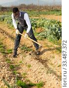 Man hoeing between onion plants. Стоковое фото, фотограф Яков Филимонов / Фотобанк Лори