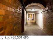 Купить «Old tunnel in mountain mine», фото № 33501696, снято 1 июля 2020 г. (c) Яков Филимонов / Фотобанк Лори