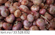 Купить «Pile of different onion varieties on market counter», видеоролик № 33528032, снято 20 ноября 2019 г. (c) Яков Филимонов / Фотобанк Лори