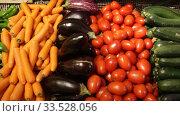 Купить «Colorful rows of fresh vegetables on market counter. Vegetable background», видеоролик № 33528056, снято 13 февраля 2020 г. (c) Яков Филимонов / Фотобанк Лори