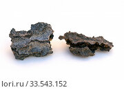 Fulgurites are natural vitrified tubes formeds by lightning strikes on sand soils. Стоковое фото, фотограф J M Barres / age Fotostock / Фотобанк Лори