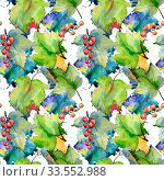 Купить «Currant leaves pattern in a watercolor style. Aquarelle leaf for background, texture, wrapper pattern, frame or border.», фото № 33552988, снято 13 июля 2020 г. (c) easy Fotostock / Фотобанк Лори