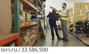 Купить «Workers checking the shelves together», видеоролик № 33586500, снято 28 сентября 2019 г. (c) Wavebreak Media / Фотобанк Лори