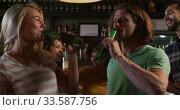 Купить «Friends at the bar in a pub dancing and having fun», видеоролик № 33587756, снято 15 ноября 2019 г. (c) Wavebreak Media / Фотобанк Лори