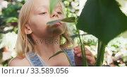 Купить «Little girl gardening in nature», видеоролик № 33589056, снято 23 января 2020 г. (c) Wavebreak Media / Фотобанк Лори