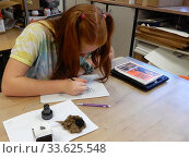 Купить «Middle School Student Drawing in Art Class, Wellsville Secondary School, Wellsville, New York.», фото № 33625548, снято 8 октября 2019 г. (c) age Fotostock / Фотобанк Лори