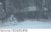 Купить «Winter forest under heavy snow on the bank of river Katun. Country house in the forest.», видеоролик № 33633416, снято 7 марта 2020 г. (c) Serg Zastavkin / Фотобанк Лори