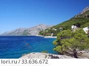 Average Dalmatia (2009 год). Стоковое фото, фотограф Александр Карпенко / Фотобанк Лори