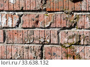 Купить «Textured Red brick wall. Block background, design pattern», фото № 33638132, снято 2 июня 2020 г. (c) Pavel Biryukov / Фотобанк Лори