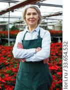 Confident female florist in greenhouse. Стоковое фото, фотограф Яков Филимонов / Фотобанк Лори