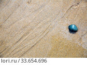 Close up of natural sand surface at the beach after low tide. Стоковое фото, фотограф Яков Филимонов / Фотобанк Лори