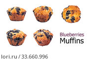 Купить «Homemade blueberry muffin isolated on white», фото № 33660996, снято 5 августа 2019 г. (c) Ольга Сергеева / Фотобанк Лори