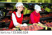 Купить «Focused woman working on fruit sorting line at warehouse, checking quality of nectarines», фото № 33666024, снято 5 июля 2020 г. (c) Яков Филимонов / Фотобанк Лори
