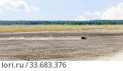 Купить «Auto racing trial in the sand pit», фото № 33683376, снято 16 августа 2019 г. (c) Евгений Ткачёв / Фотобанк Лори