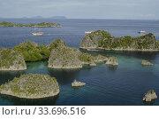 Купить «Diving liveaboard boat, Pianemo Viewpoint, Pianemo Island, near Waigeo Island, Raja Ampat, Indonesia.», фото № 33696516, снято 19 марта 2020 г. (c) age Fotostock / Фотобанк Лори