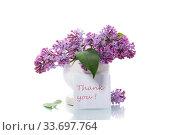 Купить «bouquet of beautiful blooming lilacs in a vase», фото № 33697764, снято 4 мая 2020 г. (c) Peredniankina / Фотобанк Лори