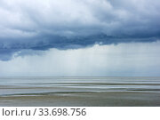 Storm clouds at low tide, St. Peter Ording, Schleswig-Holstein Wadden Sea National Park, Germany, September. Стоковое фото, фотограф Sandra Bartocha / Nature Picture Library / Фотобанк Лори