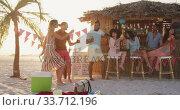 Купить «Friends enjoying a party on the beach », видеоролик № 33712196, снято 25 февраля 2020 г. (c) Wavebreak Media / Фотобанк Лори
