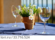 Купить «Two empty wineglasses and artificial potted plant on table», фото № 33716524, снято 20 февраля 2020 г. (c) Alexander Tihonovs / Фотобанк Лори