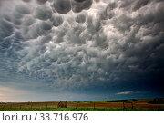 Купить «Storm Clouds Canada warning ominous skies Saskatchewan», фото № 33716976, снято 27 мая 2020 г. (c) age Fotostock / Фотобанк Лори