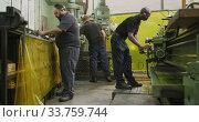 Купить «Caucasian and African American male factory worker standing at a workbench and operating machinery», видеоролик № 33759744, снято 23 ноября 2019 г. (c) Wavebreak Media / Фотобанк Лори