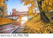 Купить «Фигурный мост Царицыно осенью в лучах солнца», фото № 33769708, снято 15 октября 2018 г. (c) Baturina Yuliya / Фотобанк Лори