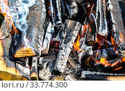 Campfire with burning wood outdoors. Стоковое фото, фотограф FotograFF / Фотобанк Лори