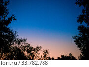 Купить «Sunset and night dark blue sky in forest with bright stars as space background», фото № 33782788, снято 30 мая 2020 г. (c) easy Fotostock / Фотобанк Лори